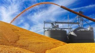 Rohstoffhandel treibt Schweizer Konjunktur an
