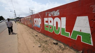 Erfolg im Kampf gegen Ebola in Westafrika