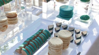 Künstlerin Andrea Staudacher kocht mit Krabbeltieren