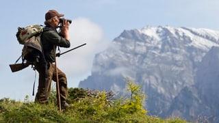 WWF macht Beschwerde gegen Wolfsabschuss