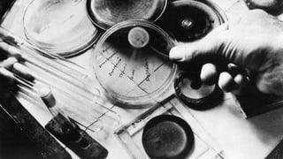 Vor 75 Jahren: Die erste Penicillin-Therapie