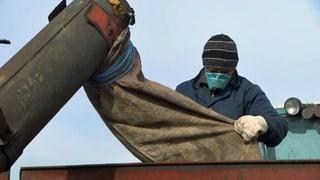 Hoffnungsmarkt trotz Konflikt: Syngenta setzt auf Ukraine