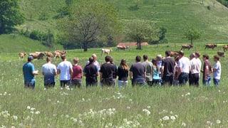 Hobbybauern spalten Landwirtschafts-Branche