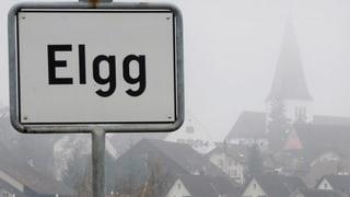 «Elgg ist kein Einzelfall»