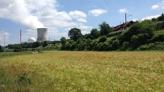 Auch AKW Leibstadt länger vom Netz