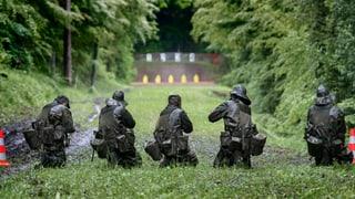 Umweltsünderin Schweizer Armee