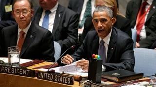 UNO-Resolution: Ausländer sollen nicht für IS kämpfen