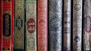 Aktuell keine Imam-Ausbildung am Zentrum für Islam in Freiburg