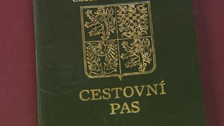 Basler Grenzwächter erwischen Dokumentenfälscher