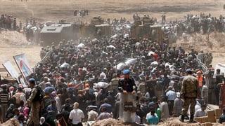 Wo sind die syrischen Flüchtlinge?