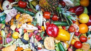 Lebensmittel-Plattform kommt nicht in die Gänge