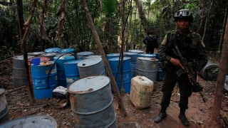 Kolumbien geht neue Wege im Kampf gegen die Kokain-Produktion