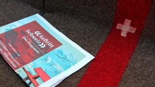 Die Schweiz, ein kleiner Fisch im grossen Büchermeer