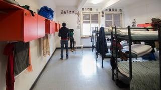 Nov bajetg da lain per requirents d'asil a Meiersboden