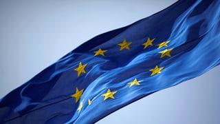 Die EU – nicht für Krisen konstruiert