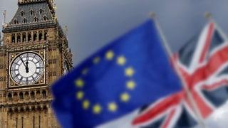 Die Alternativen zu Mays Brexit-Deal in der Übersicht