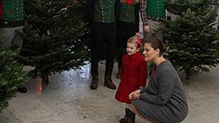 Estelle findet es «bäumig» – die Royals im Weihnachtsfieber