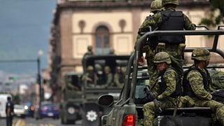 Bürgerwehr und Drogenmafia: Zweifronten-Krieg in Mexiko