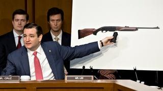 US-Waffengesetz: Es geht vorwärts – in kleinen Schritten