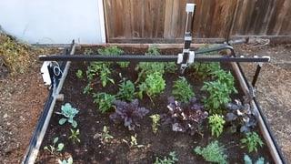 «Es gibt Garten-Roboter, die können sogar Unkraut jäten»