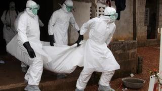 Video «Ebola – wer stoppt die Seuche?» abspielen