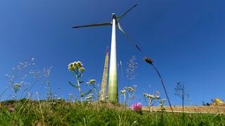 Initiativen gegen Windkraft in der Region geplant