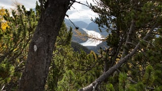 Graubünden warnt vor grosser Waldbrandgefahr