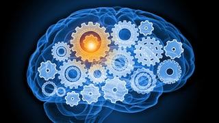 Testen Sie Ihr Gehirn: Was kennen Sie auswendig?