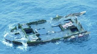 Nach Tsunami: Japanische Makrelen überleben vierjährige Irrfahrt