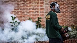 Zehntausende mit Zika-Virus infiziert