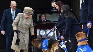Einfach tierisch: Die Queen ist auf den Hund gekommen