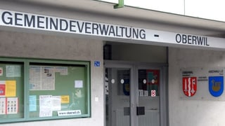 Über Projekt Eisweiher entscheidet der Oberwiler Souverän