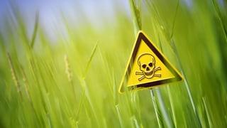 Video «Pestizide im Essen – Wie gefährlich sind die Agrargifte?» abspielen