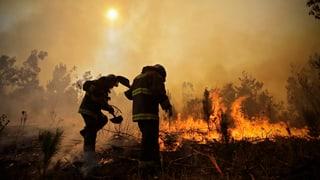 Brand-Inferno in Chile ausser Kontrolle