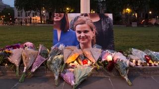 Cox-Attentäter offenbar psychisch kranker Neonazi-Sympathisant