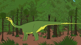 Video «Ralph und die Dinosaurier: Nigersaurus (14/26)» abspielen
