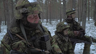 Video «Angst vor den Russen» abspielen
