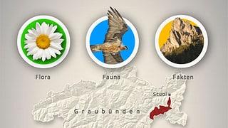 Nationalpark: Flora, Fauna, Fakten