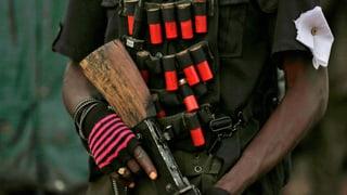 Boko Haram: Armee hebt Terror-Schule aus
