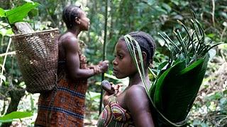 Ist der WWF schuld an der Misere der Baka-Pygmäen?