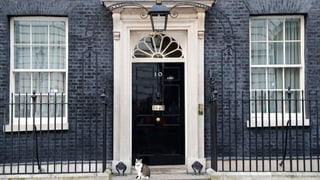 Das sind die Kandidaten für die Cameron-Nachfolge