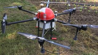 Maschinen mit Augen und Drohnen mit GPS