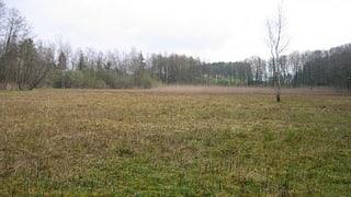 Baustart im Naturschutzgebiet