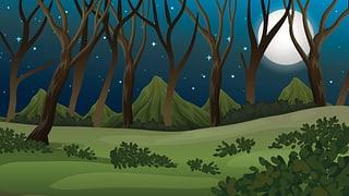 «Nachts allein im Wald»