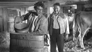 Uli der Knecht (1954) (Artikel enthält Video)