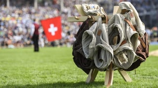 Vor dem Eidgenössischen Schwing- und Älplerfest erklärt SRF die wichtigsten Fachbegriffe rund um den Kampf im Sägemehl.