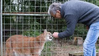 René Strickler wehrt sich weiter gegen Raubtierpark-Räumung