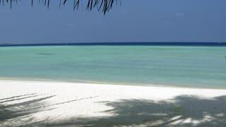 Regierung auf den Malediven hegt Ölpläne