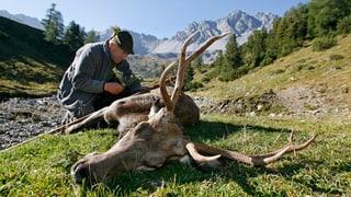 Bündner Jäger wollen die Sonderjagd behalten
