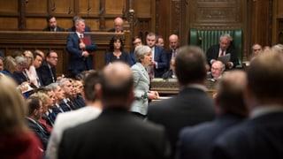 Parlament erzwingt eine Abstimmung über Alternativen